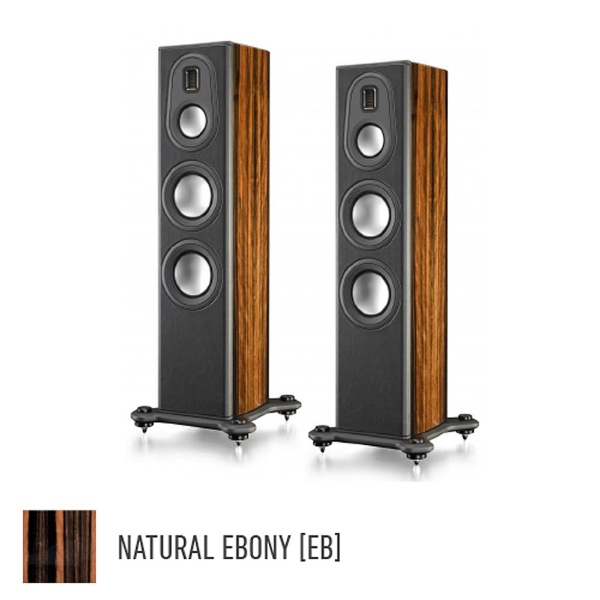 Platinum PL200 II-EB [NATURAL EBONY �y�A]