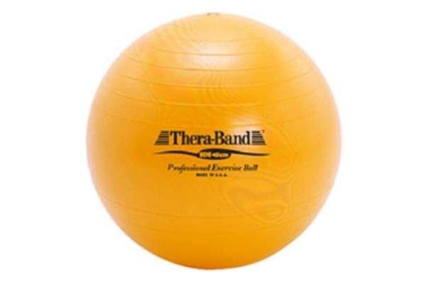ディーエム「SDS EXERCISE BALL」SDS-45(45cm)