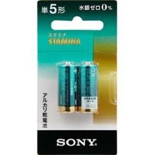 LR1SG-2BHD 単5電池 スタミナ(STAMINA) [2本 /アルカリ]
