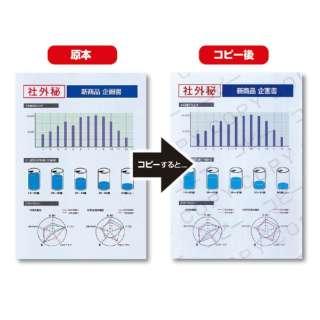 マルチタイプコピー偽造防止用紙 (B5・100枚) JP-MTCBB5