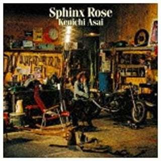 浅井健一/Sphinx Rose DVD付初回限定盤 【CD】
