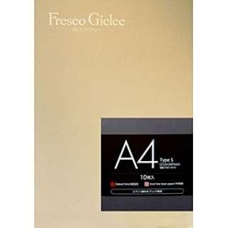 Fresco Giclee Type S (A4サイズ・10枚) FGS1-A410