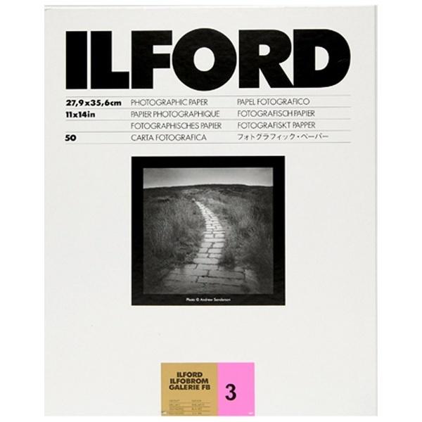 イルフォード IGFB3号1K 11×14 50枚