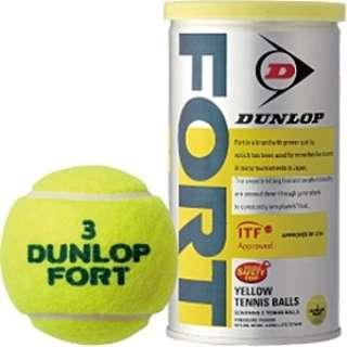 プレッシャーライズド テニスボール FORT(2個入り) DFDYL2TIN