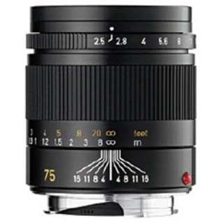 カメラレンズ M F2.5/75mm SUMMARIT(ズマリット) [ライカM /単焦点レンズ]