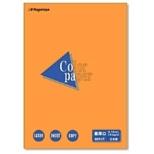 カラーペーパー 最厚口 オレンジ (B5サイズ・25枚) ナ-4518