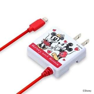 AC充電器 Lightning ミッキー&ミニー PG-DNYMFI230MM