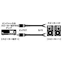 ジェイブイシー スピーカーコード ピンプラグ 先バラ3m 2本1組 CN-158A