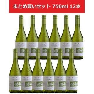 コノスル ヴァラエタル ソーヴィニヨンブラン 750ml(12本) 【白ワイン】