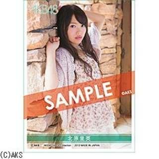 AKB48 スリーブコレクション 北原里英