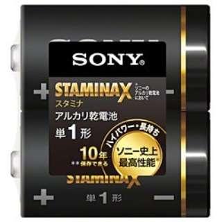 LR20SG-2PE 単1電池 スタミナX(STAMINA X) [2本 /アルカリ]