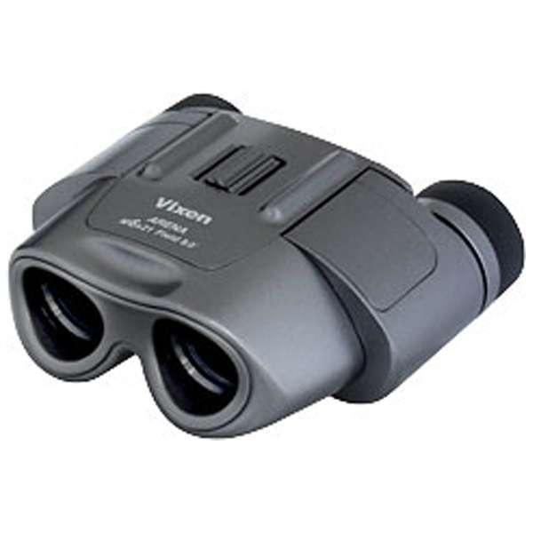 6倍双眼鏡 「アリーナ」 M6×21