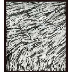 ラグ ネオグラス(200×200cm/ブラック)