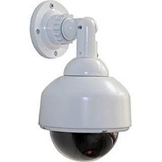 スピードドーム型ダミーカメラ DS-2100