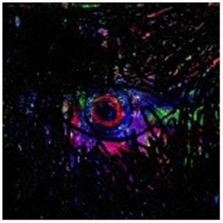 きのこ帝国/eureka 【CD】