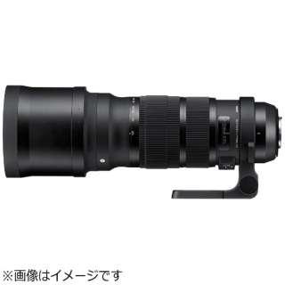 カメラレンズ 120-300mm F2.8 DG OS HSM Sports ブラック [シグマ /ズームレンズ]