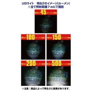 HGN1221F-A-B 懐中電灯 H GRADE ブルー [LED /単1乾電池×2]