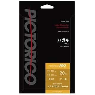 ピクトリコプロ ソフトグロスペーパー(はがきサイズ・20枚) PPG210-HG/20