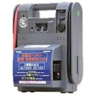 充電バッテリー AC&DC 22A NMP822AC30
