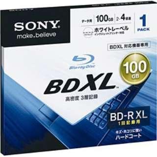 4倍速対応 データ用Blu-ray BD-R XLメディア (100GB・1枚) BNR3DCPJ4