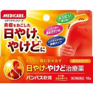 【第2類医薬品】 パンパス軟膏(15g)