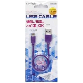 PSVita2000用 USBケーブル20cm 紫【PSV(PCH-2000)】