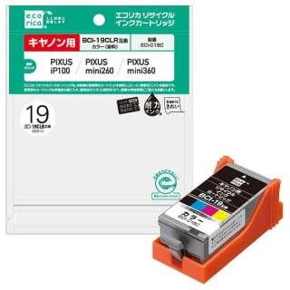 ECI-C19C 互換プリンターインク エコリカ カラー