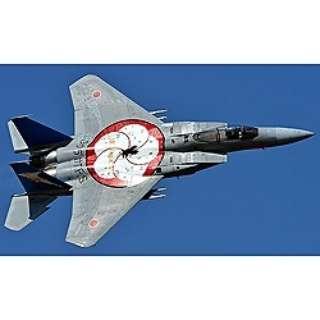 1/72 F-15J イーグル 2012 百里スペシャル