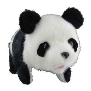 まわりんこパンダ