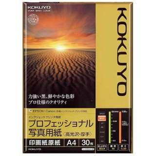 インクジェットプリンター用 プロフェッショナル写真用紙 高光沢・厚手 (A4サイズ・30枚) KJ-D10A4-30