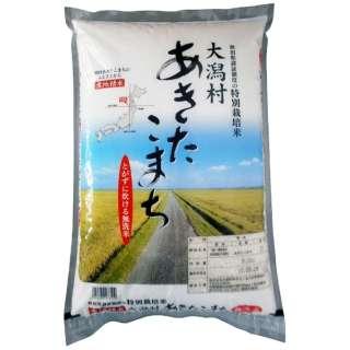 大潟村産あきたこまち 無洗米 5kg【お米】