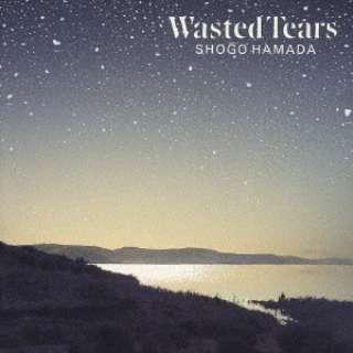 浜田省吾/ WASTED TEARS