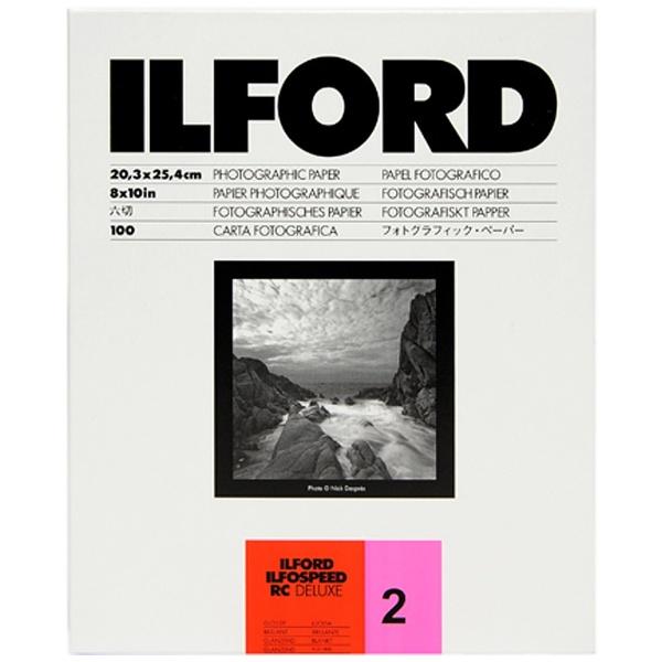 イルフォード IR号1M 8X10 100枚