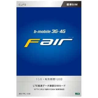標準SIM 【b-mobile】 3G・4G Fair 1GB/4ヶ月(120日)パッケージ BM-FRL-1GB