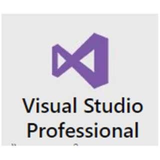 〔Win版〕 Visual Studio Professional 2012