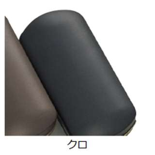 メガネケース(クロ)MP-20-2