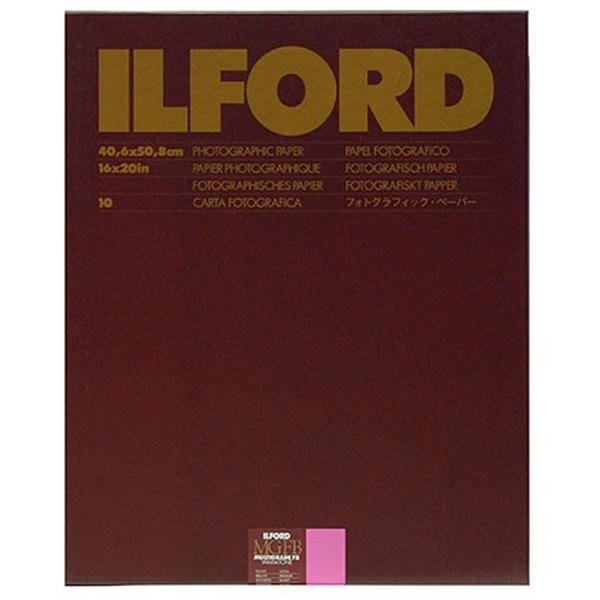 イルフォード MGFBWT 1K 16X20 10 BX