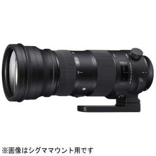 カメラレンズ 150-600mm F5-6.3 DG OS HSM Sports ブラック [キヤノンEF /ズームレンズ]