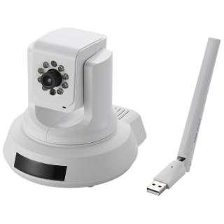 NCC-EWNP100 ネットワークカメラ ホワイト [暗視対応 /有線・無線]