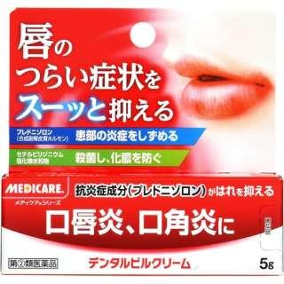 【第(2)類医薬品】 メディケア デンタルピルクリーム(5g)