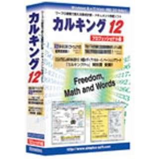〔Win版〕 カルキング Ver12 プロフェッショナル版 (1ユーザ、3ライセンス付き)