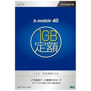 マイクロSIM 【b-mobile】 3G・4G 1GB定額パッケージ(30日間) BM-FRML-1GBM