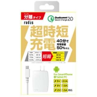 [micro USB]AC-USB充電器 2.0A +micro USBケーブル 1m (ホワイト)RK-ADA31W [1.0m]