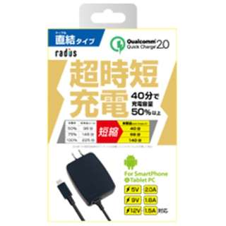 タブレット/スマートフォン対応[micro USB] AC充電器 2A (1m・ブラック) RK-ADA32K