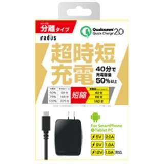 [micro USB]AC-USB充電器 2.0A +micro USBケーブル 1m (ブラック)RK-ADA31K