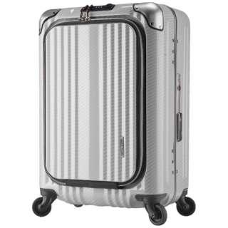 TSAロック搭載スーツケース 横型ビジネスキャリー(38L) 6203-50 ラフカーボンホワイトシルバー