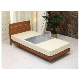 【冷却ジェルマット】蚊がキライなジェルパッド エコでクール プチシングルサイズ(60×90cm)