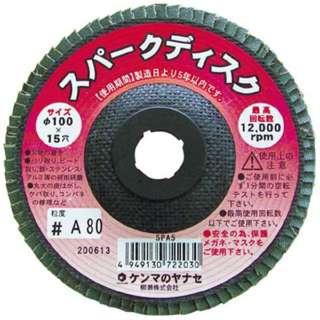 スパークディスク100X15 A80 10枚入 SPA510