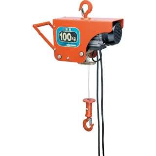 電気ホイスト 100kg 揚程10m ZS100