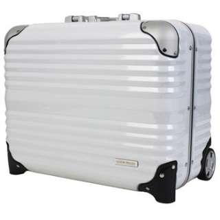 TSAロック搭載スーツケース 横型ビジネスキャリー(31L) 6200-44 ホワイト